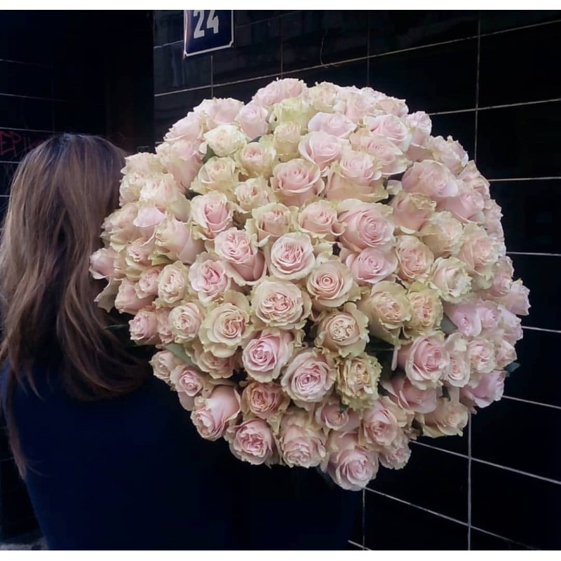 51 розовая роза Эквадор, высота 70 см