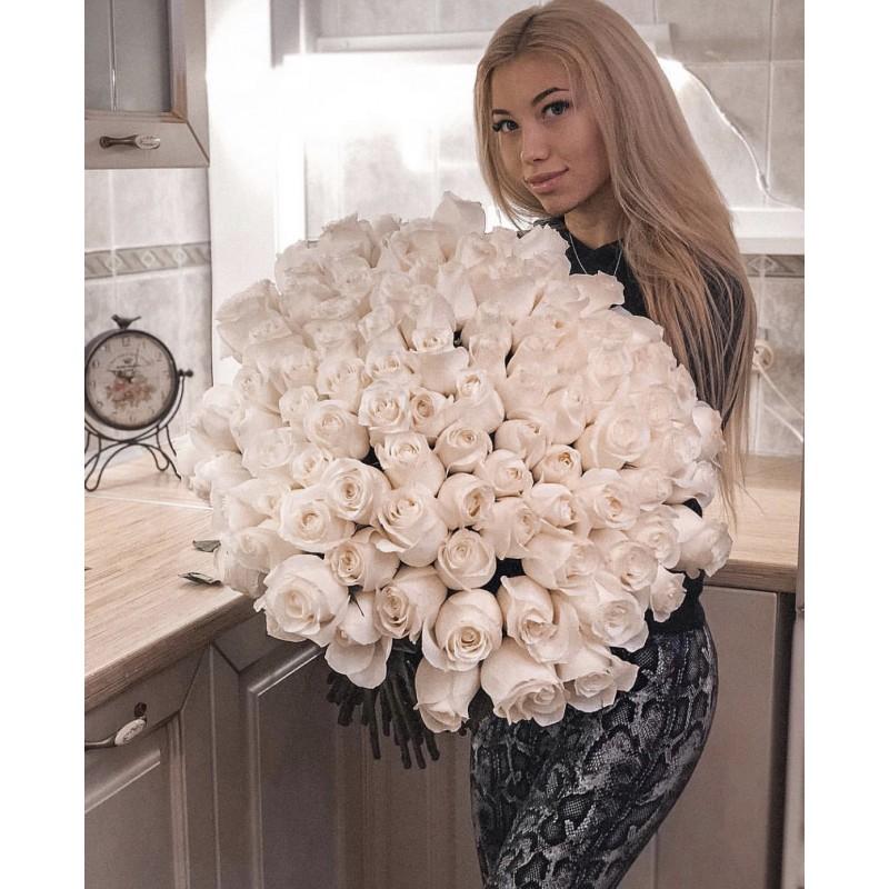 101 белая роза Прауд эквадор