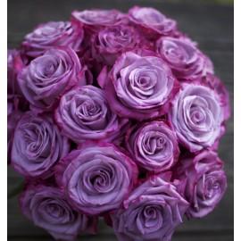 Розы Moody Blue поштучно от 25 штук