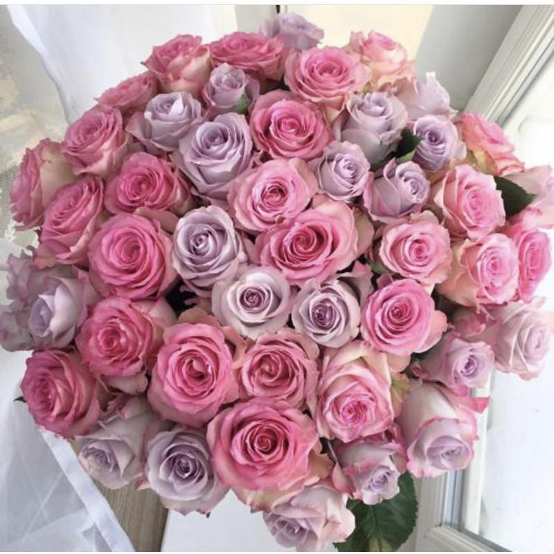 Розовый пурпур