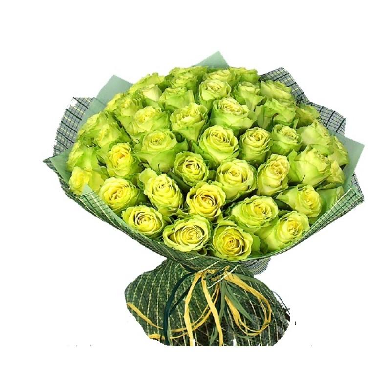 51 зеленая роза