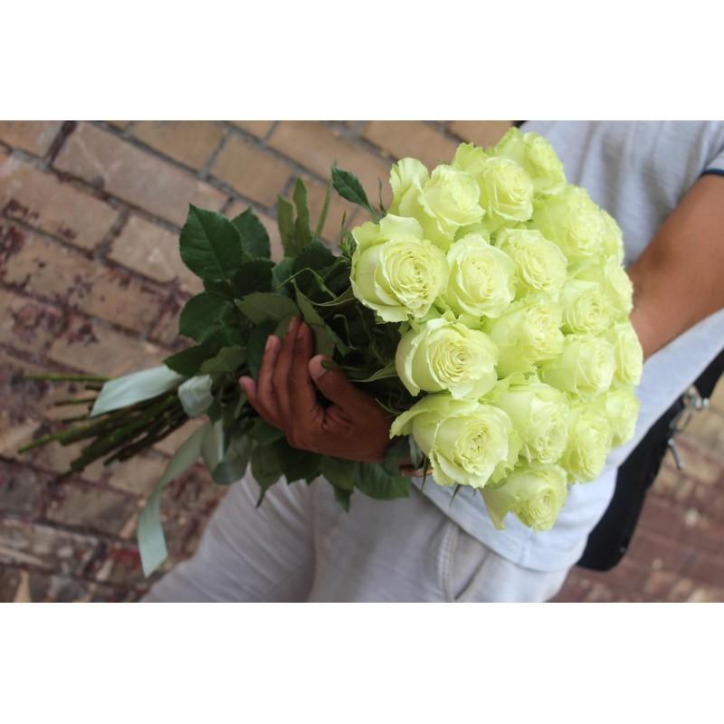 25 зелёных роз высота 70 см.