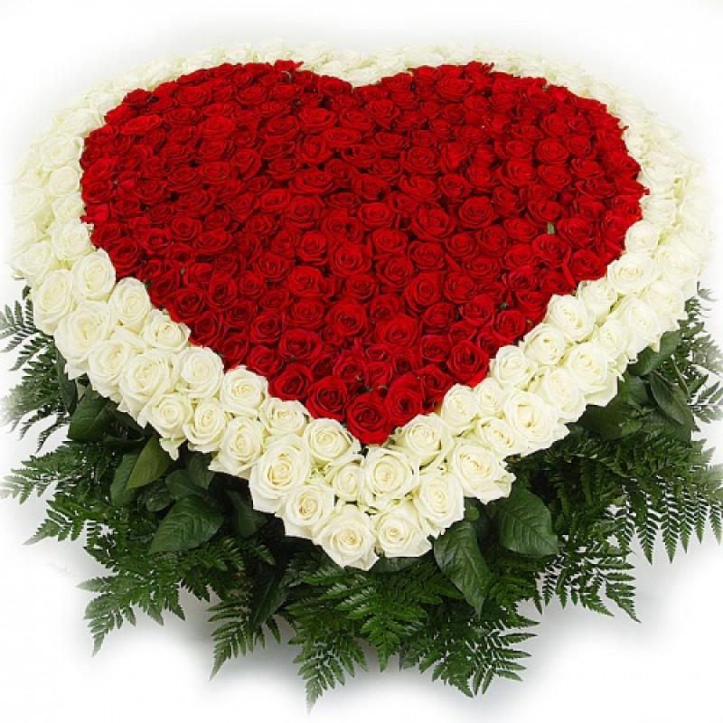 Сердце из 151 розы