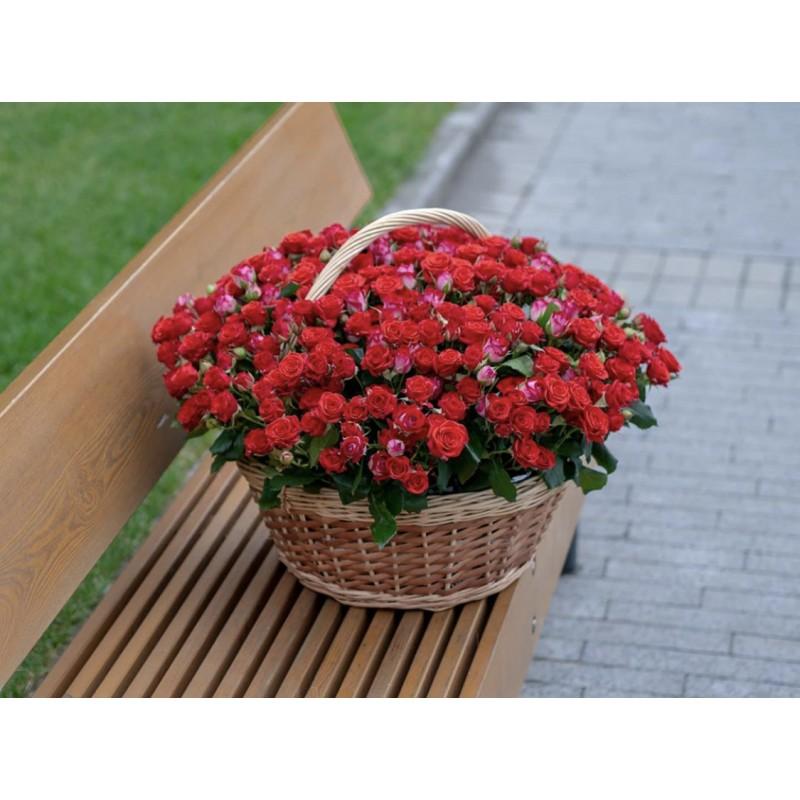 Корзина из 101 кустовой розы