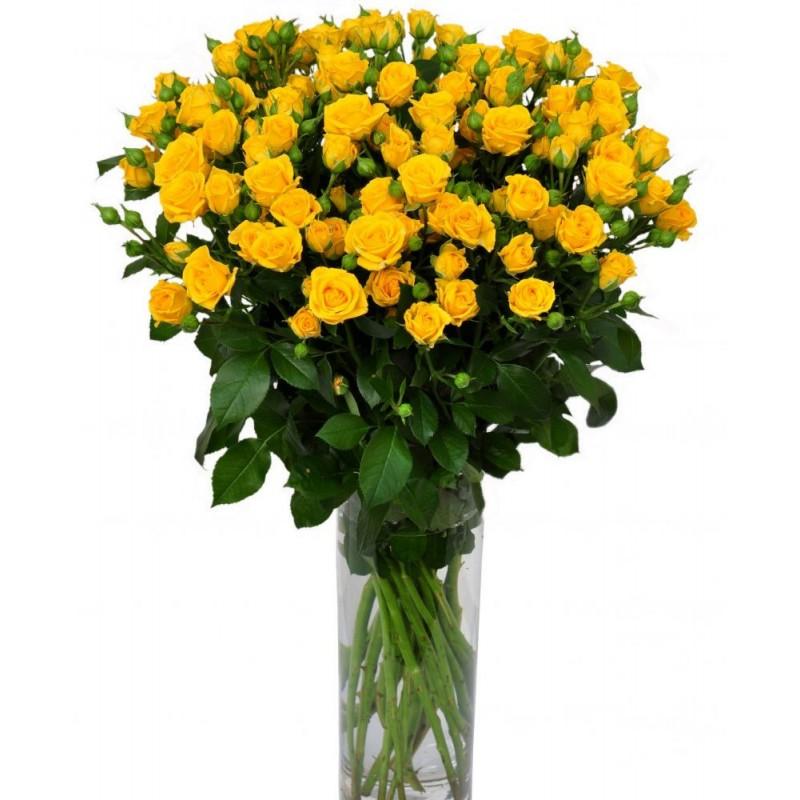 29 желтых кустовых роз
