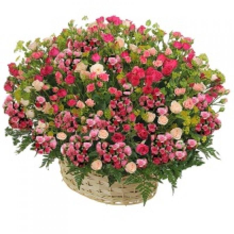 Большая корзина кустовых роз