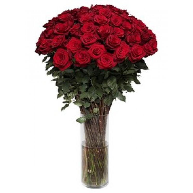 51 роза 170 см., в вазе