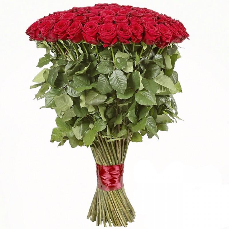 101 роза высотой 120 см, Эквадор