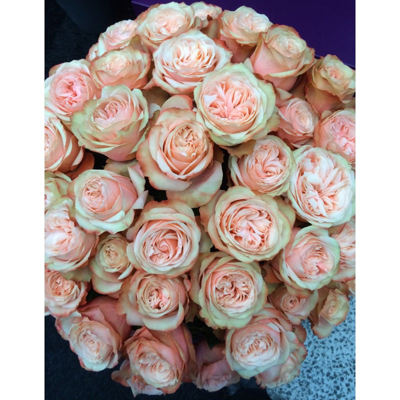 Розы Гравити поштучно от 9 штук