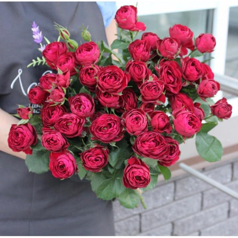 Розы Руби Джем.
