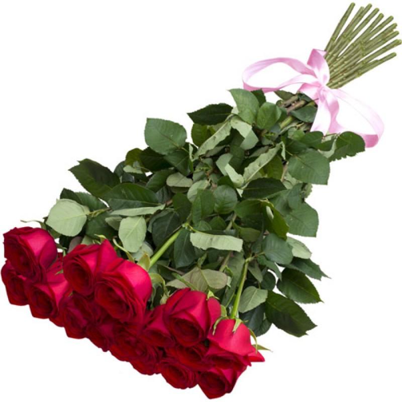 Длинные розы 80 см., поштучно от 19 штук
