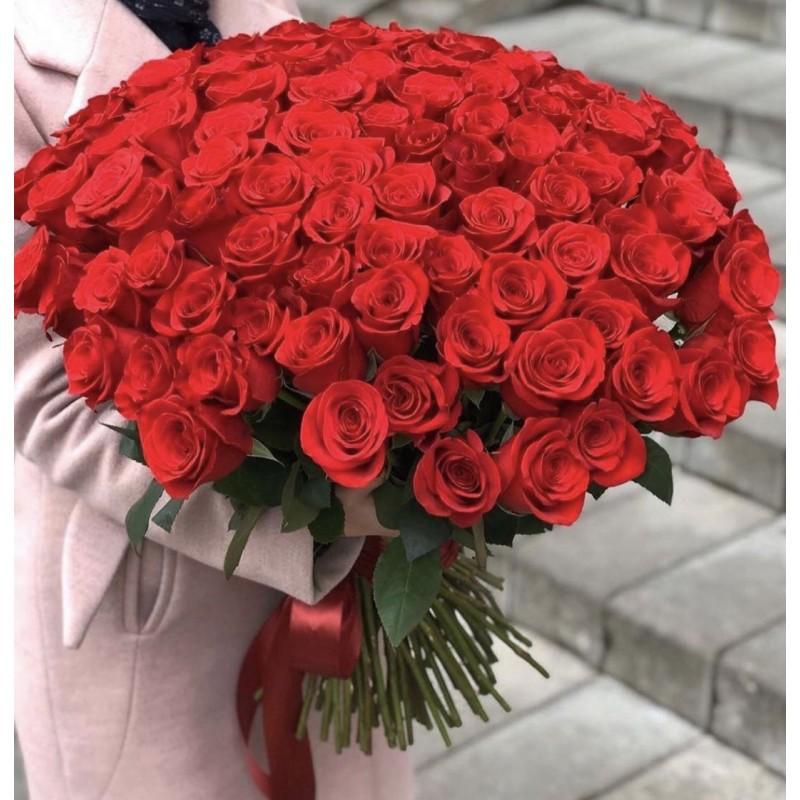 101 роза Фридом высота 60 см