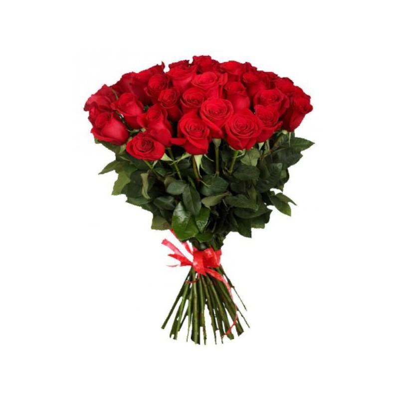 39 роз Фридом высота 70 см.