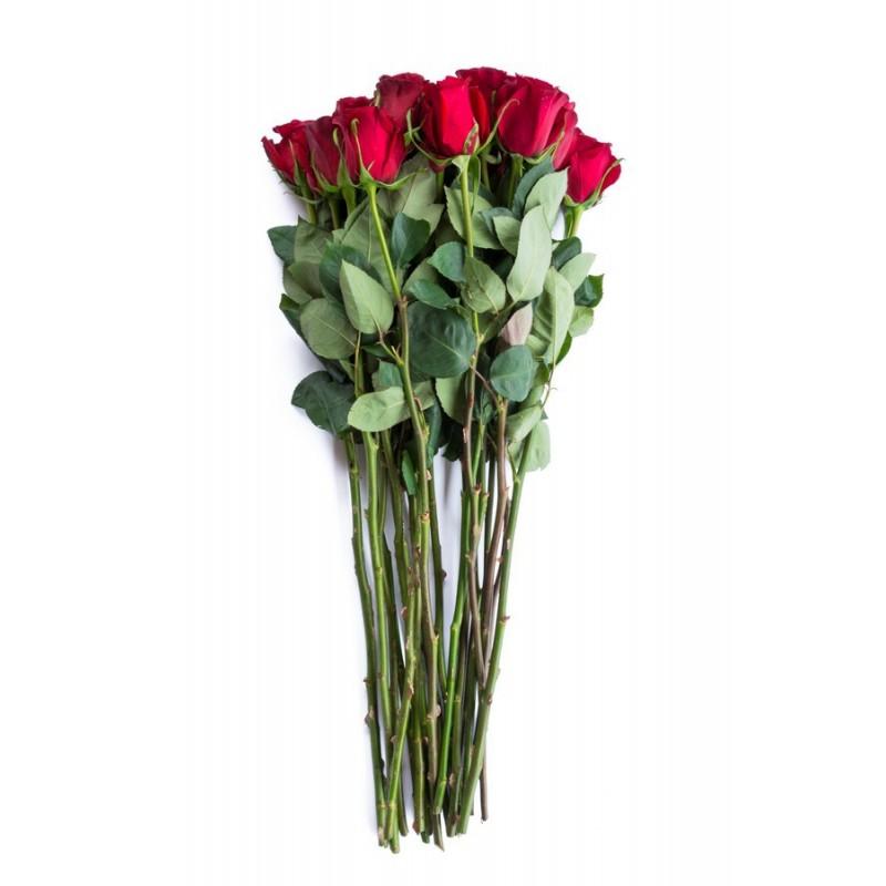 Розы Фридом, высота 80 см.