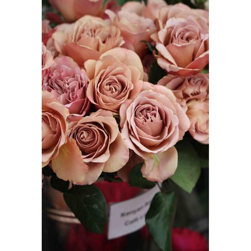 Розы Кофе Латте поштучно