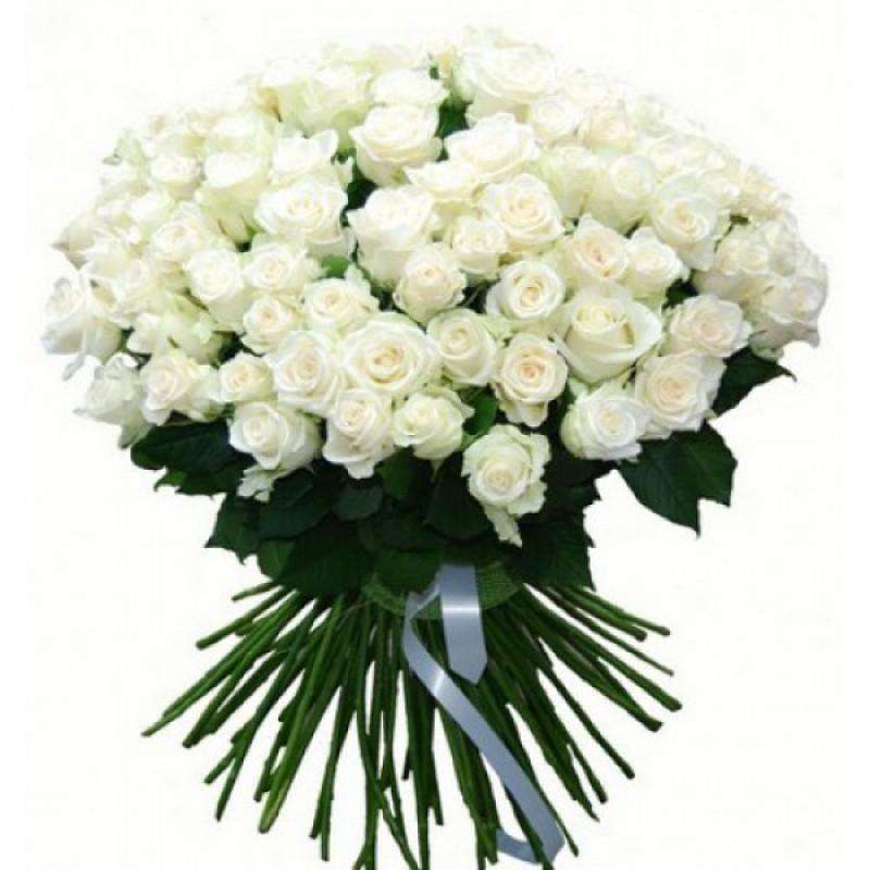 101 белая роза Венделла (Эквадор)